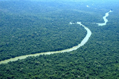 Meio Ambiente. Portal Brasil